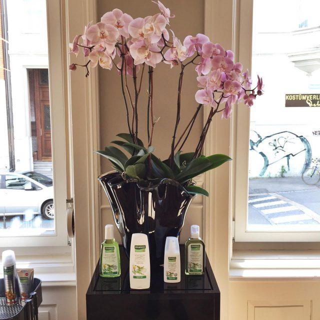 Am Herbal Beauty Day von Rausch im wunderschnen Salon vonhellip